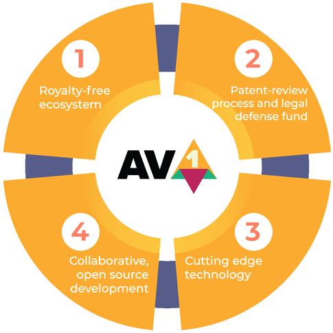 AOMedia Vision for AV1_Circle Graph